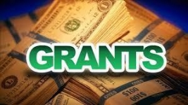 Grants Now Available for Bird City Communities