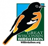 Bird Cities and the 2020 Great Wisconsin Birdathon, a Perfect Pairing